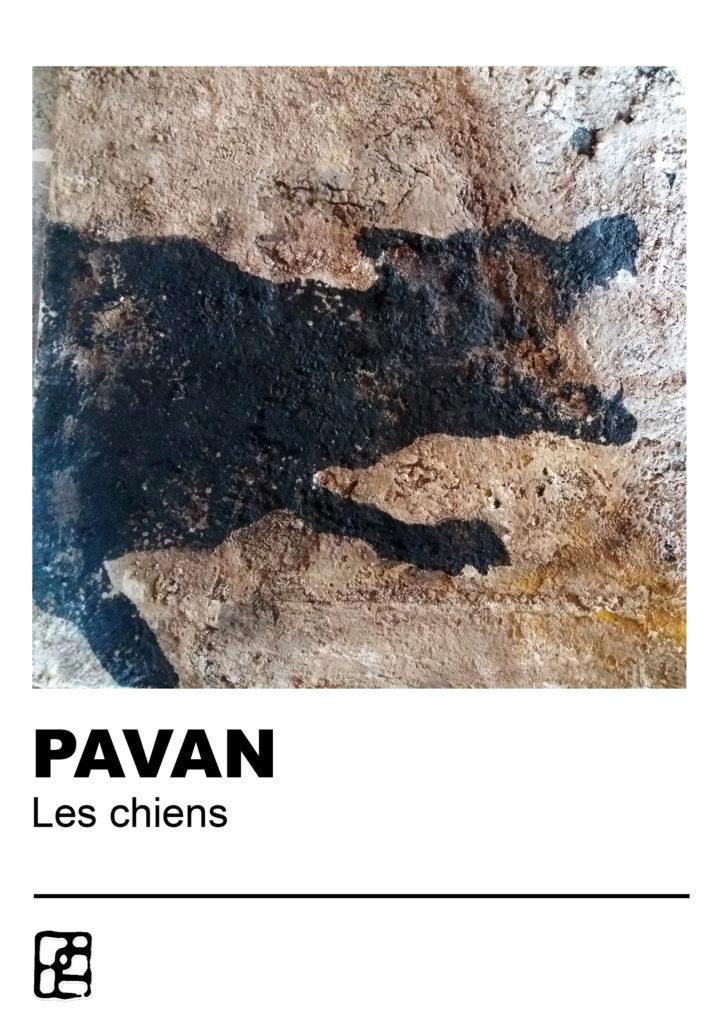 DOG 01 PAVAN