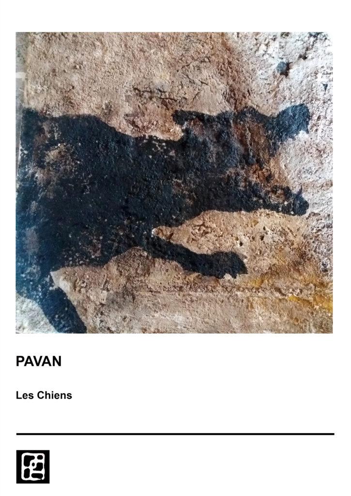 DOG 1 PAVAN